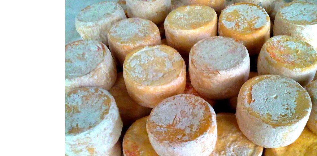 Elaboración del queso Los Bellos