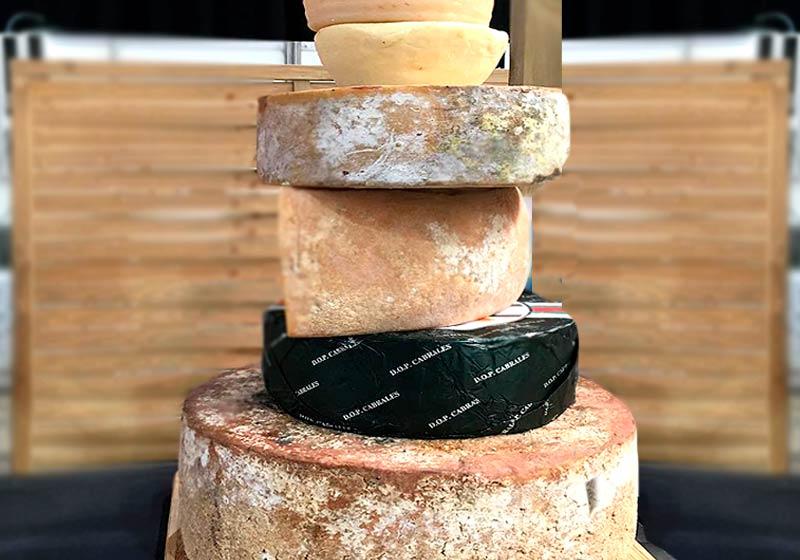 Variedades de quesos asturianos